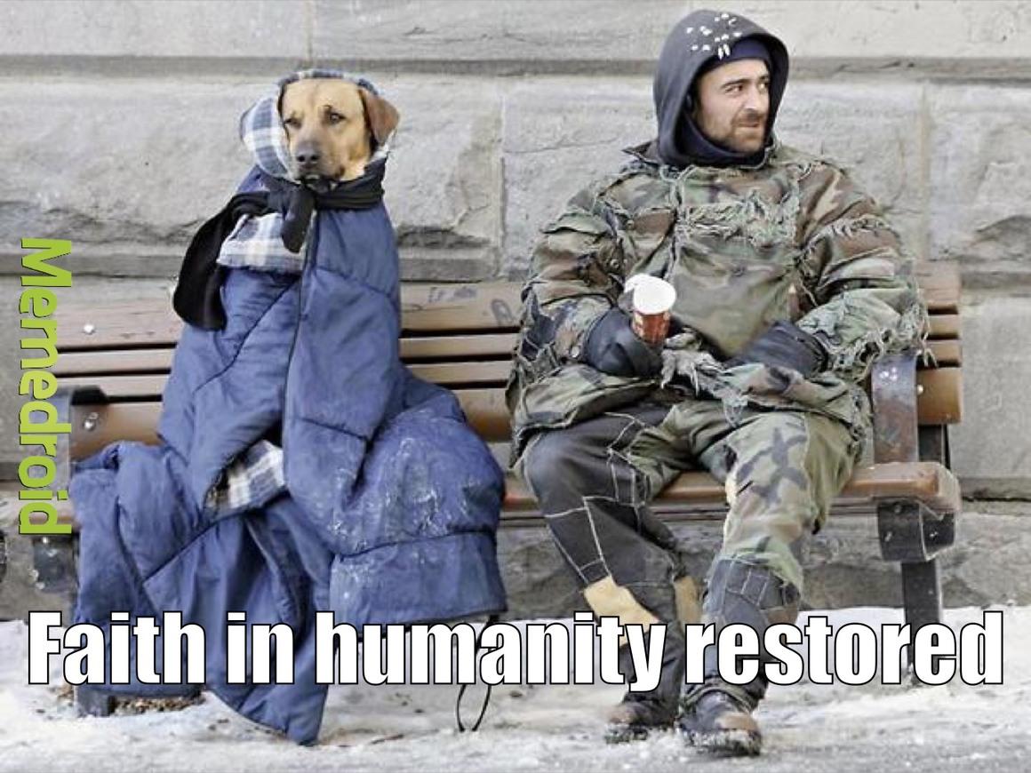 dogs best friend - meme