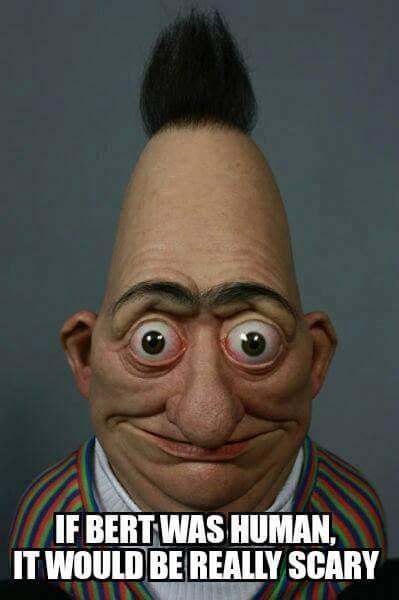 Bert in real life - meme
