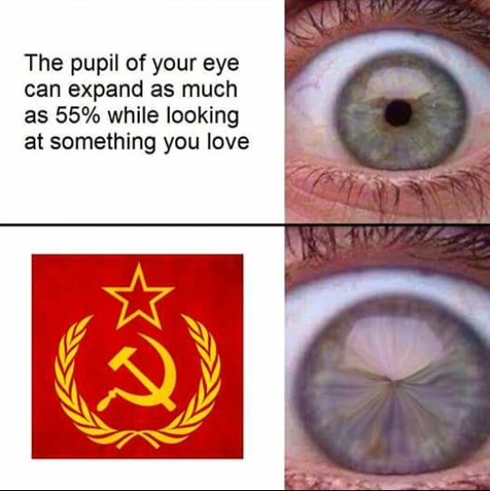 i cant see - meme