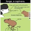 Jorge...