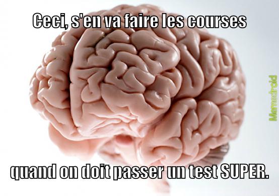 Le cerveau nous encule tous. - meme