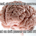Le cerveau nous encule tous.