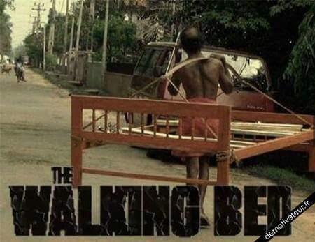 Après The Walking Dead ... - meme