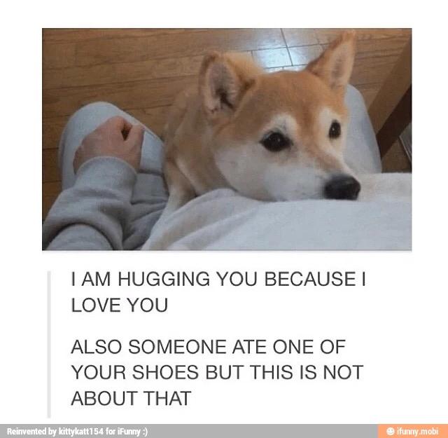 Aw puppy - meme