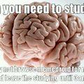 Hardest subject in school?