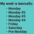 pretty much right