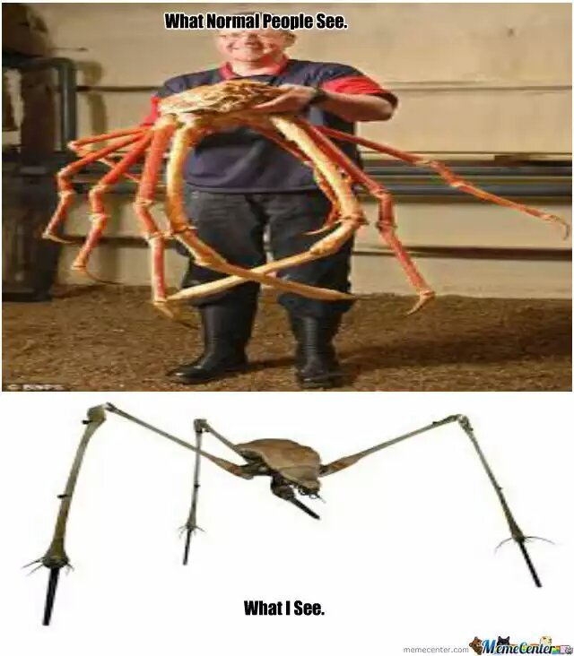 Half-Life 2 - meme