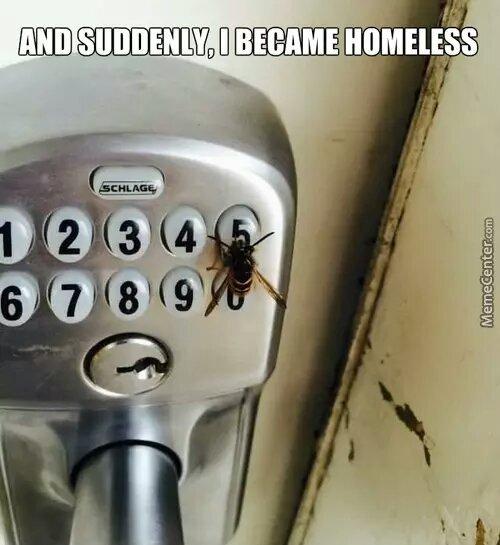 now i am homeless - meme