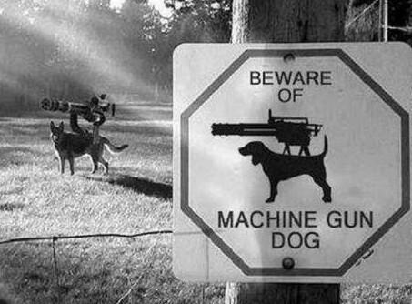 Attention chien méchant - meme