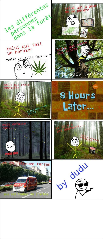 Forêt - meme