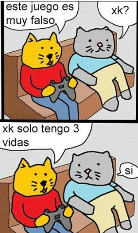 Gato culiao - meme