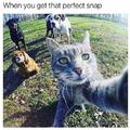 Perfect snap