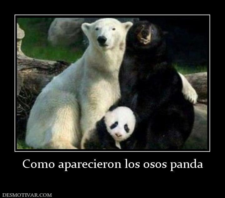Pandas :)))), - meme