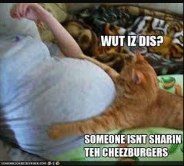 I want cheeseburgers - meme