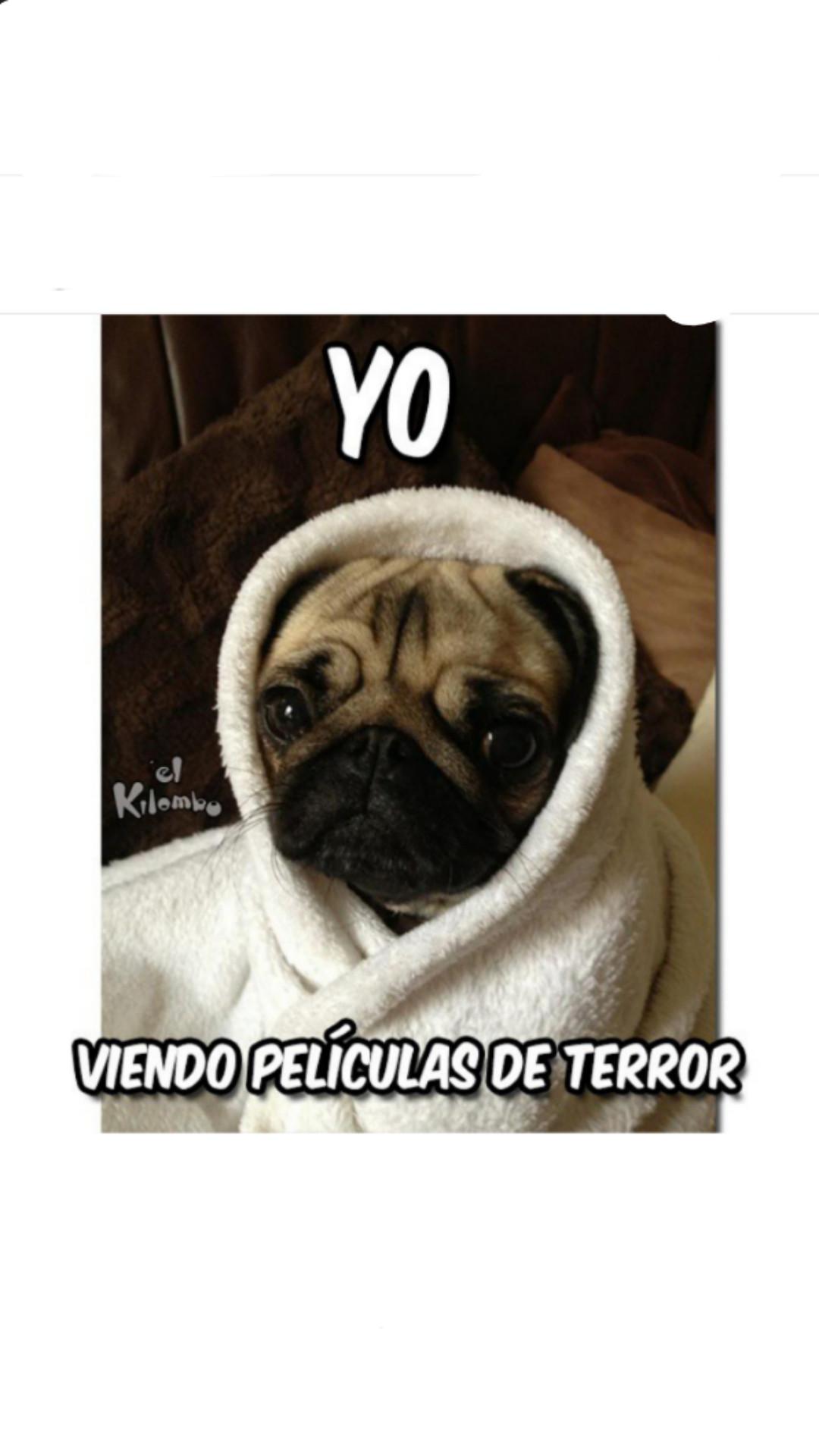 Terror - meme