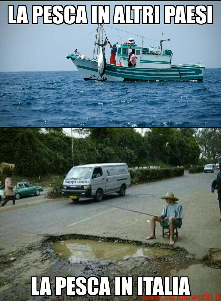 Pesca - meme