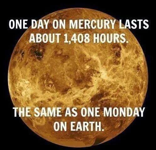 Seriously. - meme
