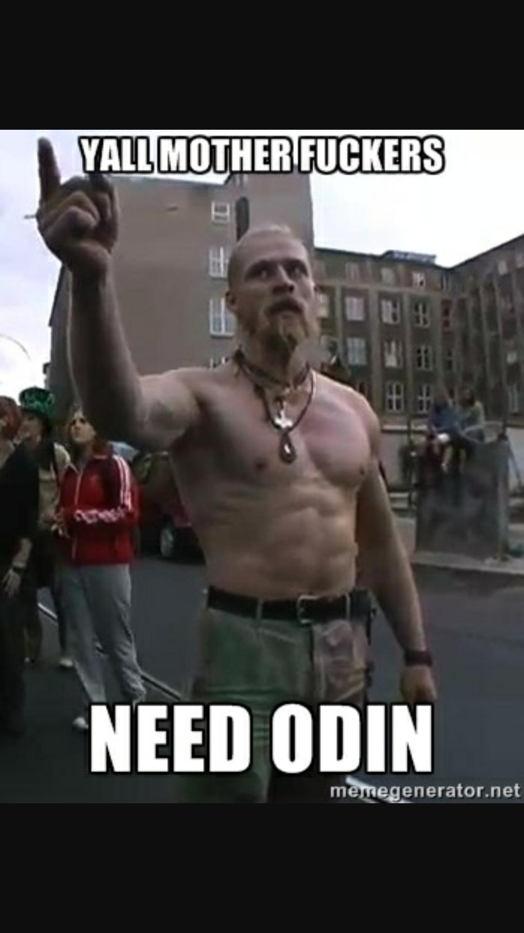Vote Odin - meme