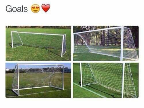 Goals <3 - meme