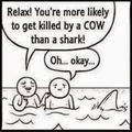 AAAAAAHH! COWS ARE EVIL!!