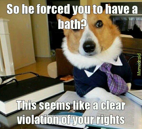 Violation of rights - meme