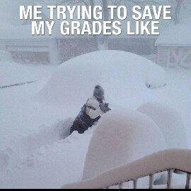 My grades - meme