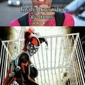 Harley Quinn month