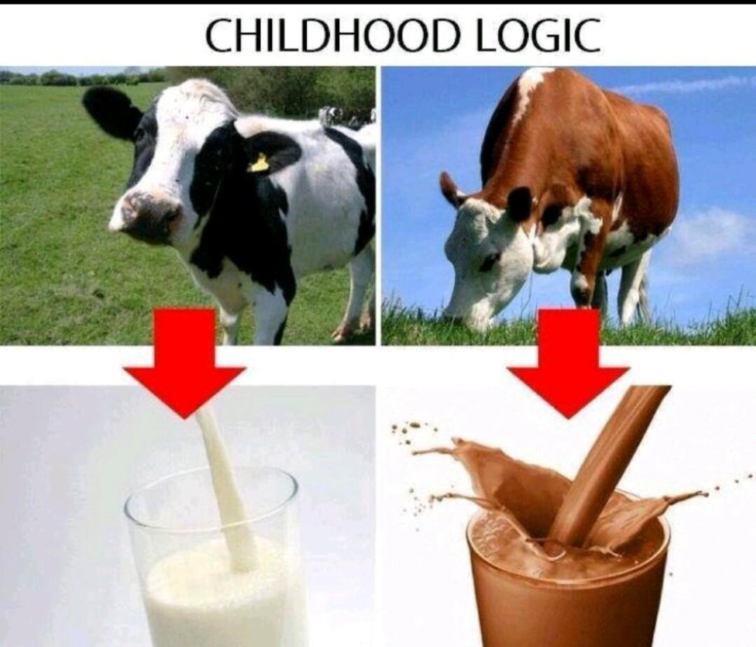 Cause.. Logic - meme