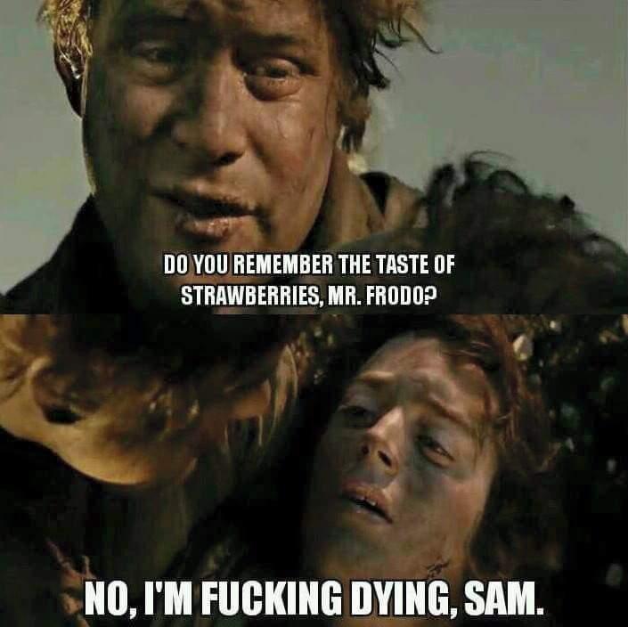 Damn it sam - meme