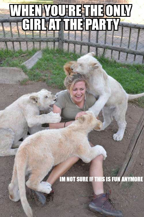 She'll be lion on her back later... - meme