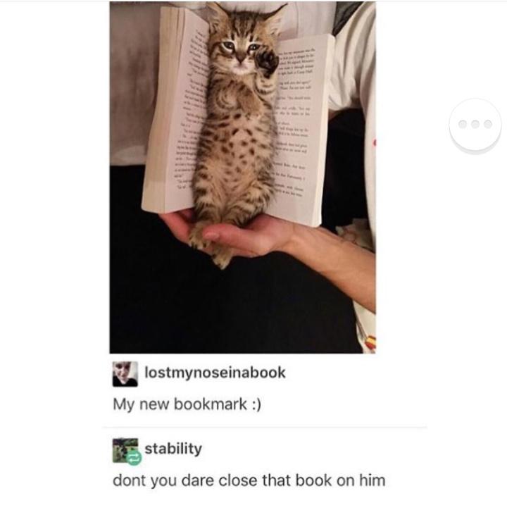 50 shades of bookmarks - meme