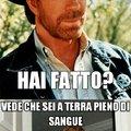 Chuck Norris ha potere su tutto