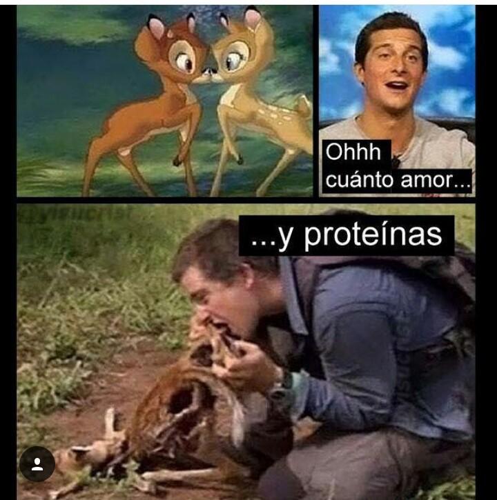 Muchas proteinas jajaja - meme