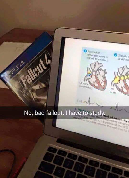Bad fallout T^T - meme