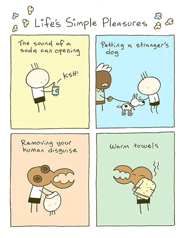 Life simple pleasures - meme