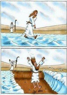 Moisés troll - meme