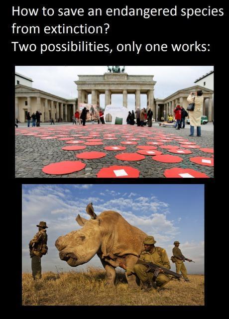 Saving endangered species! - meme
