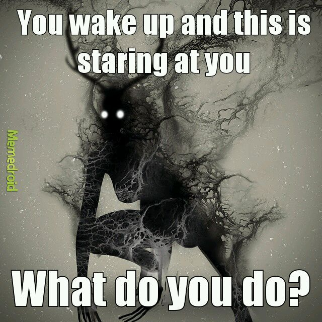 What would you do - meme