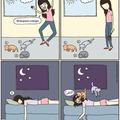 Primeiro comentario ama gatos