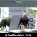 a deal