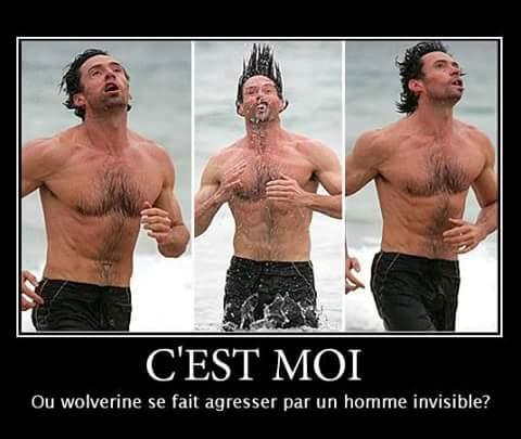 Personne touche à Wolverine ! - meme