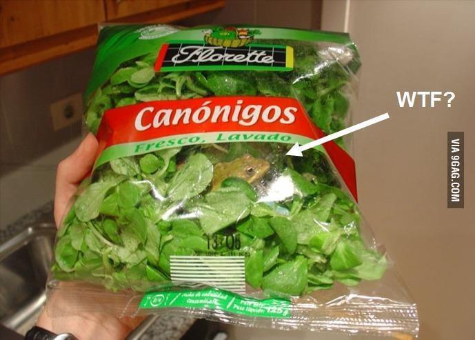 Surprise ! Bonus dans sa salade - meme