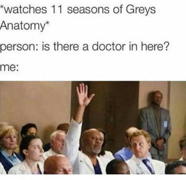 Grey's Anatomy is the shit - meme