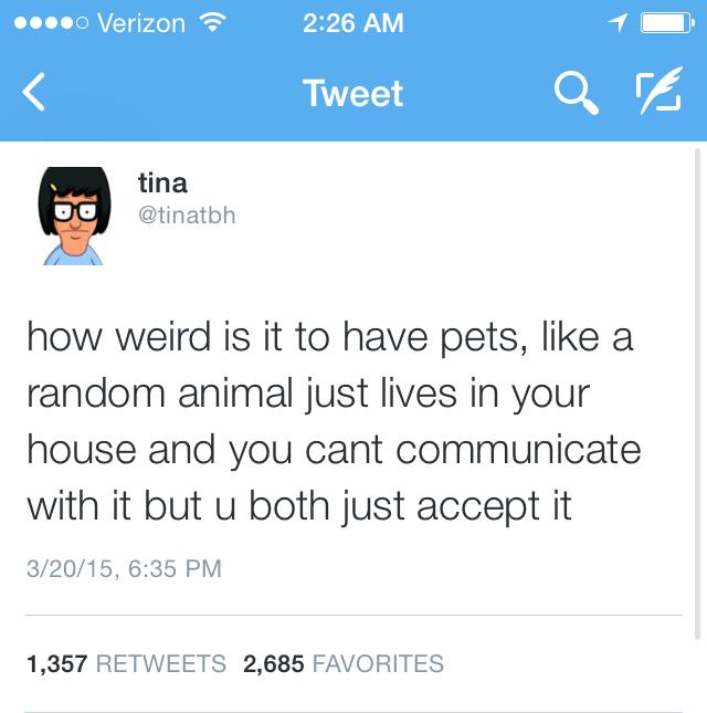 Tina - meme