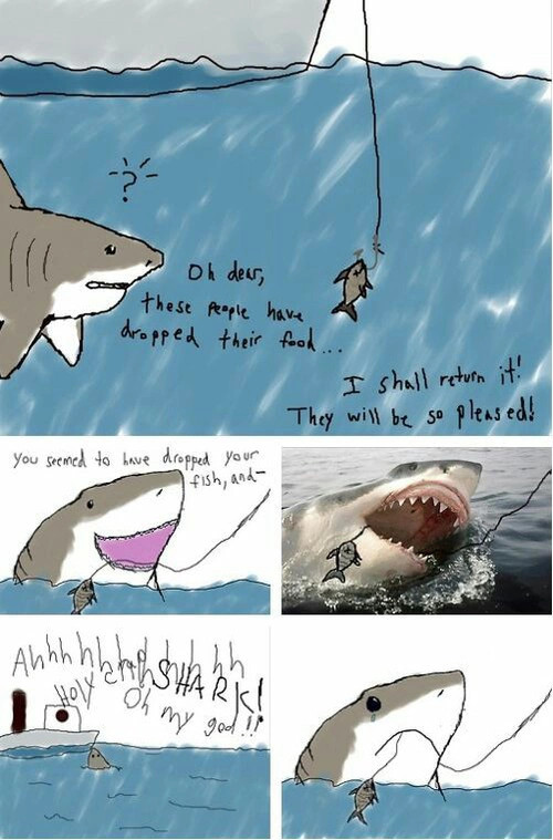 shark is sad - meme