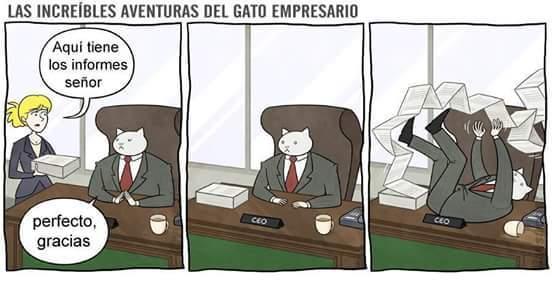 El título fue a trabajar como empresario - meme