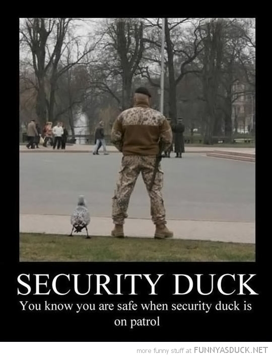 "....""Security"".... - meme"
