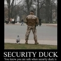 "....""Security""...."