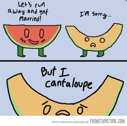 like watermelons? - meme