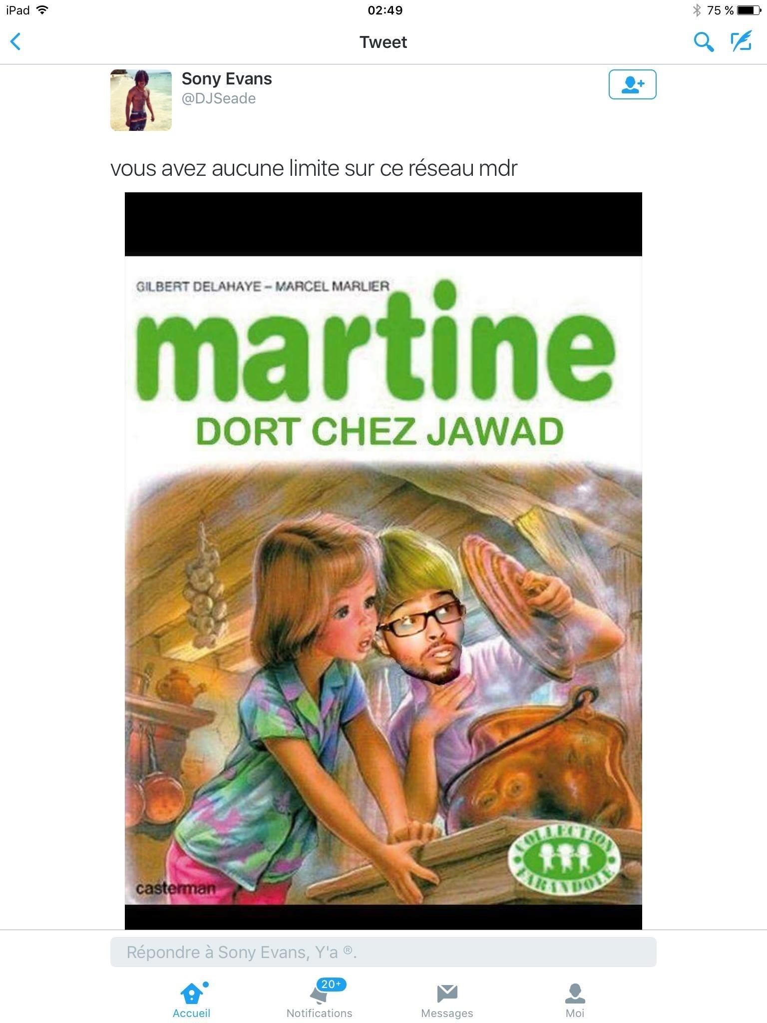 Martine - meme